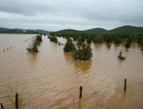 Agevolazioni per le imprese extra agricole danneggiate dagli eventi alluvionali del novembre 2012