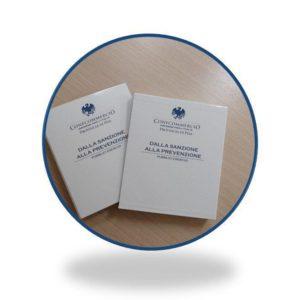Manuale dalla sanzione alla prevenzione