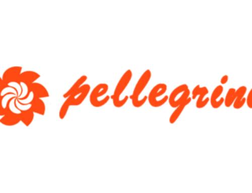Pellegrini: cabine sanificanti
